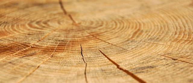 Solid Oak Flooring Your Questions Answered Woodpecker Flooring