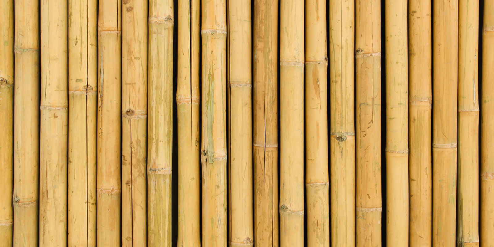 Bamboo Flooring Explore The Facts Woodpecker Flooring