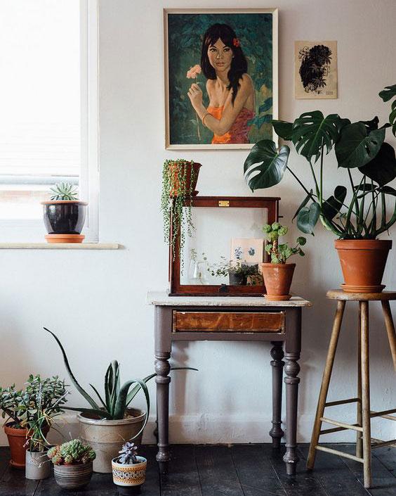 2018 home design houseplants
