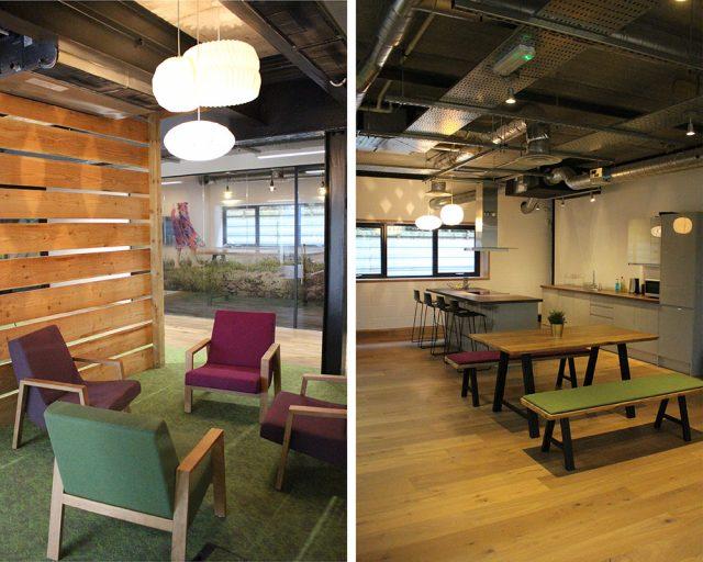 woodpecker new office
